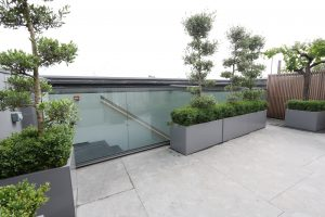 Automated roof light with plants surrounding the roof
